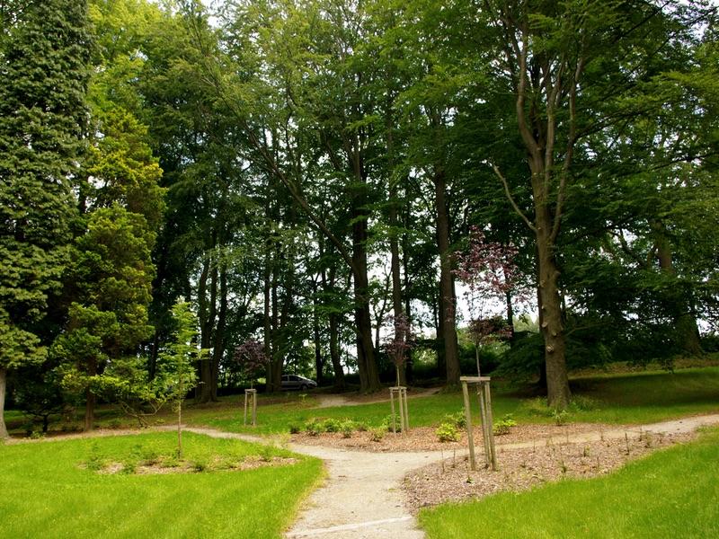 Parkové úpravy a údržby